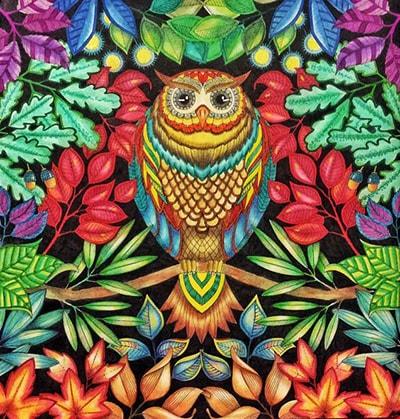 Kleurplaten Volwassenen Ingekleurd.De Mooiste Kleurboeken Voor Volwassenen