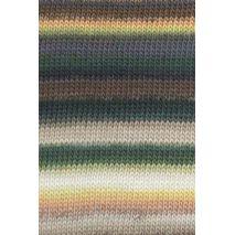 Viva groen-bruin 067 LANG Yarns