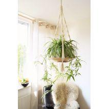 Plantenhangers knopen van Big Ribbon van Katia