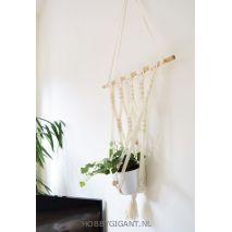 Plantenhangers knopenn van Big Ribbon van Katia