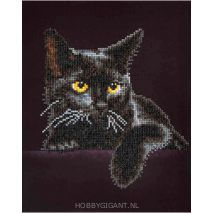 Diamond Dotz - Midnight Cat | Hobby Gigant