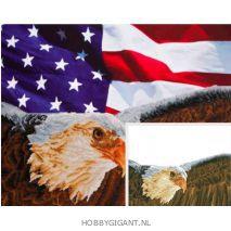Bad Eagle and Flag - Diamond Dotz