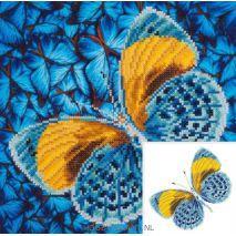 Flutter by Gold - Diamond Dotz